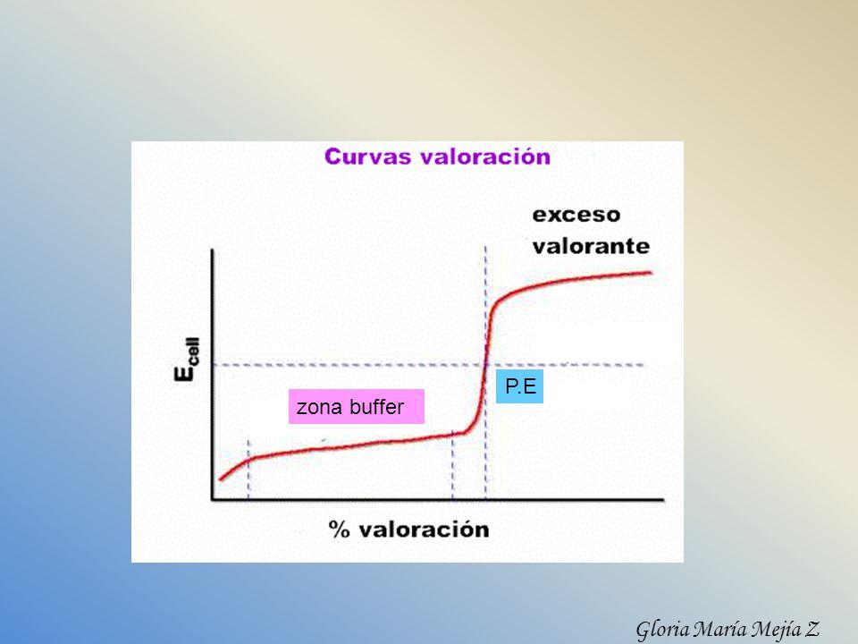 P.E zona buffer Gloria María Mejía Z
