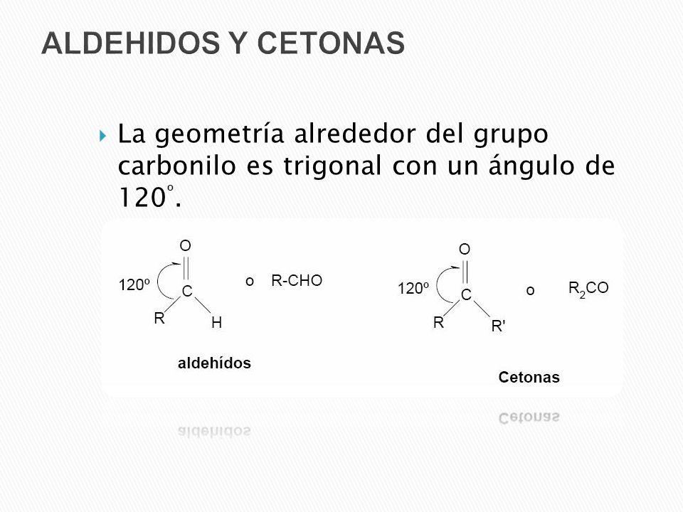 ALDEHIDOS Y CETONAS La geometría alrededor del grupo carbonilo es trigonal con un ángulo de 120º.