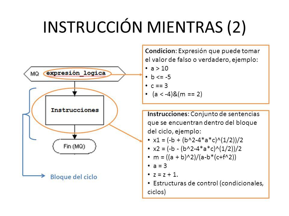 INSTRUCCIÓN MIENTRAS (2)