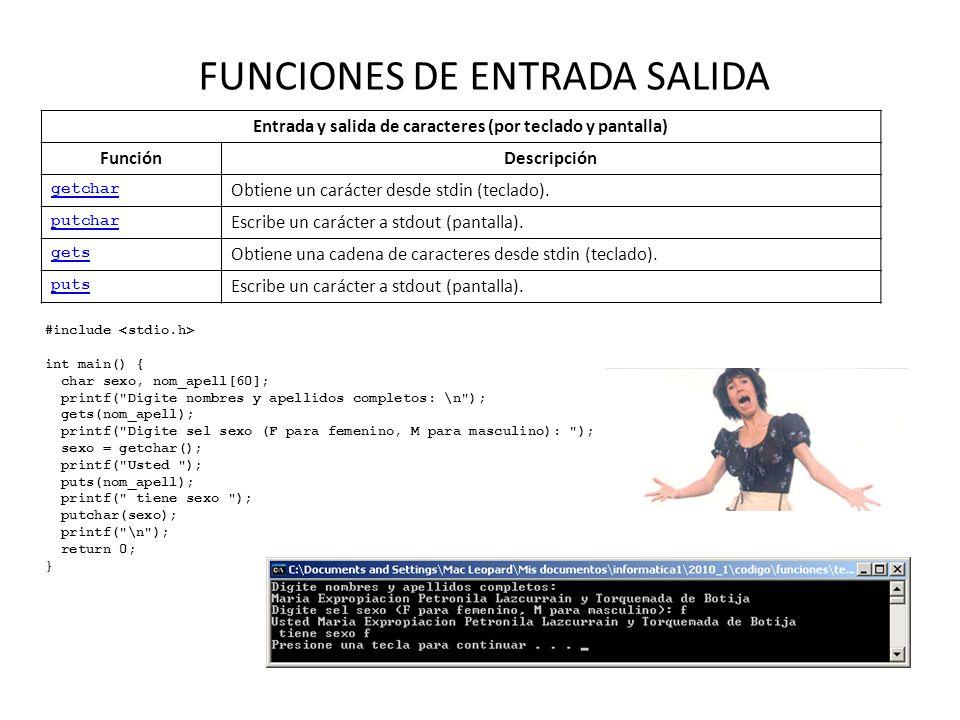 FUNCIONES DE ENTRADA SALIDA