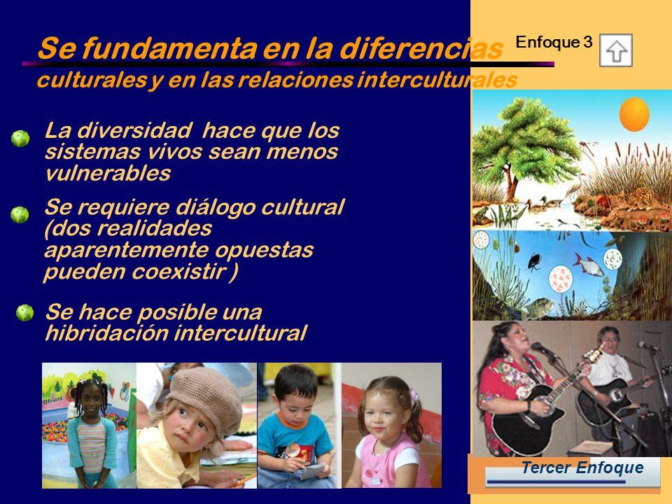 Se fundamenta en la diferencias culturales y en las relaciones interculturales