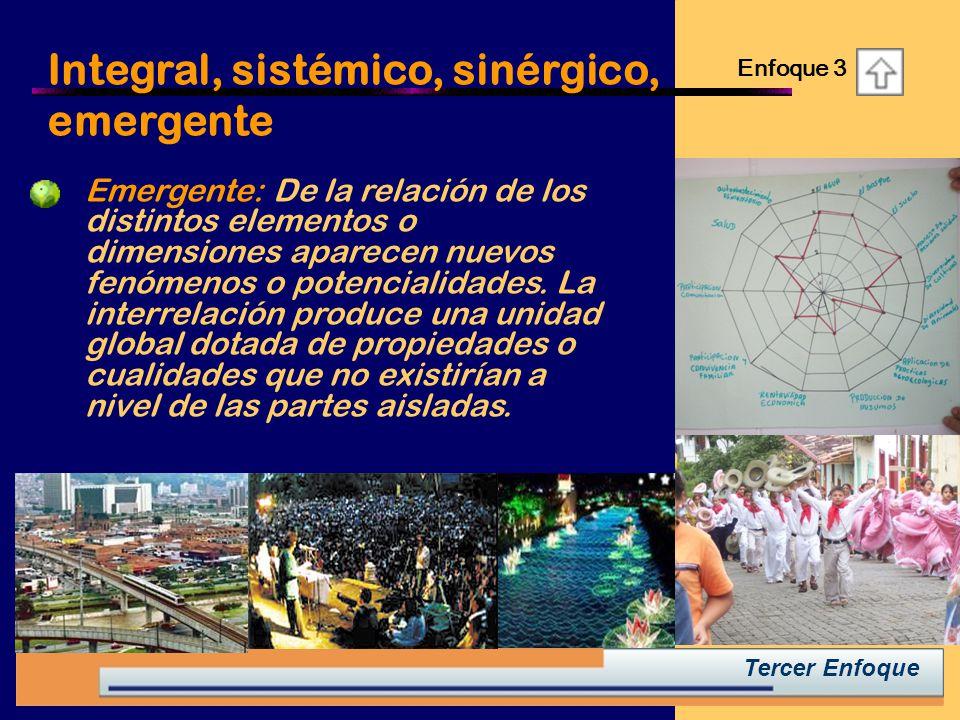 Integral, sistémico, sinérgico, emergente