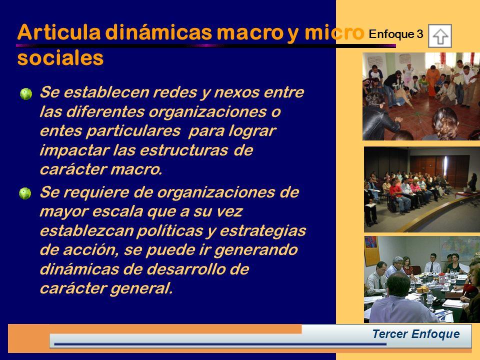 Articula dinámicas macro y micro sociales