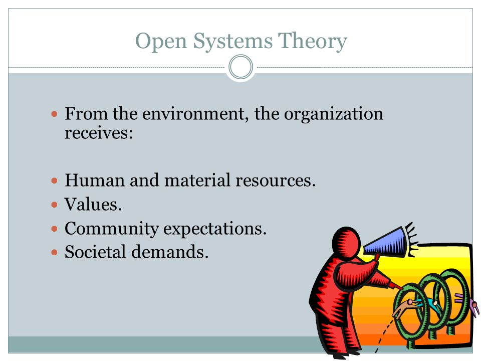 Open Systems Theory From the environment, the organization receives: