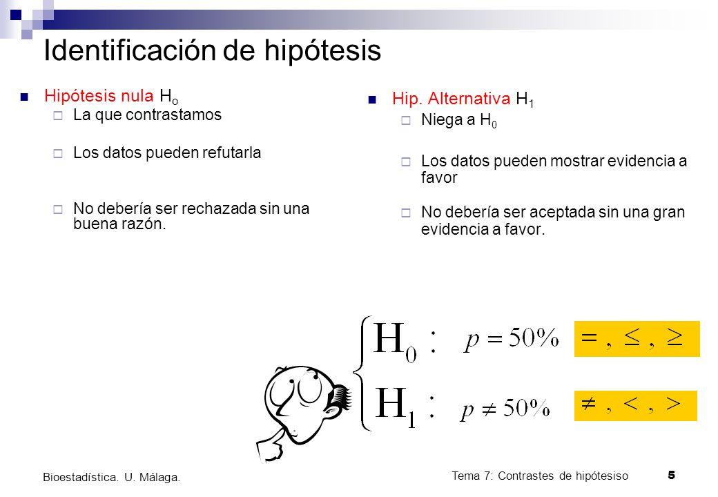 Identificación de hipótesis