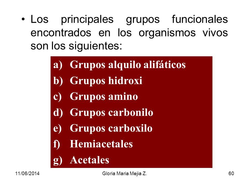 Grupos alquilo alifáticos Grupos hidroxi Grupos amino Grupos carbonilo