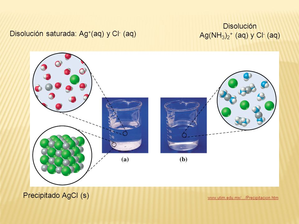 Disolución Ag(NH3)2+ (aq) y Cl- (aq)