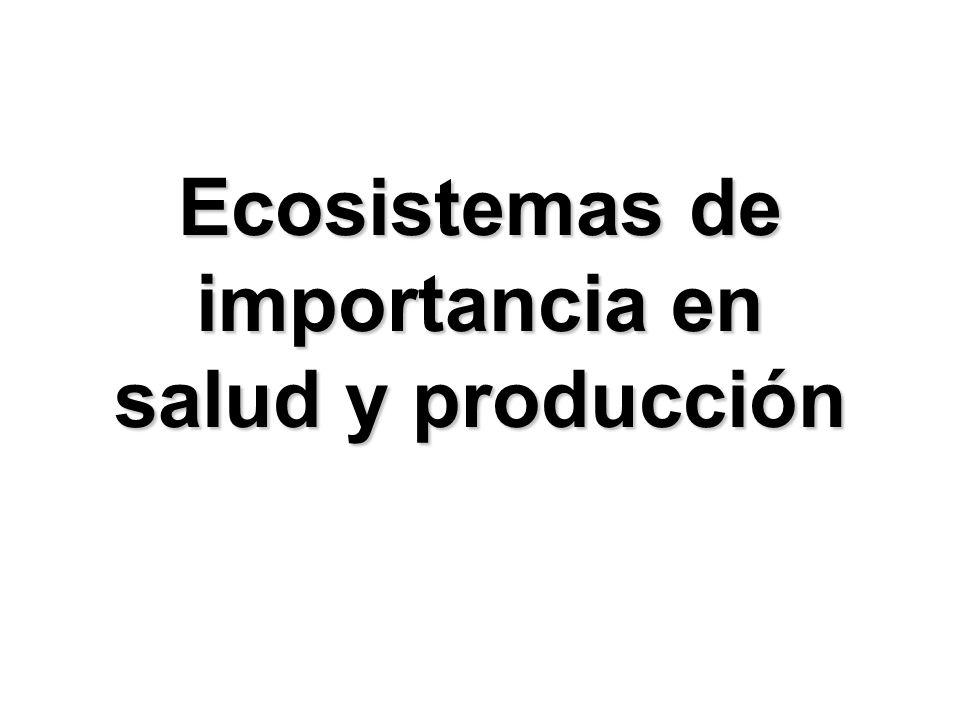 Ecosistemas de importancia en salud y producción