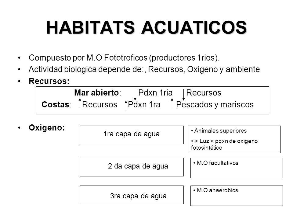HABITATS ACUATICOS Compuesto por M.O Fototroficos (productores 1rios).