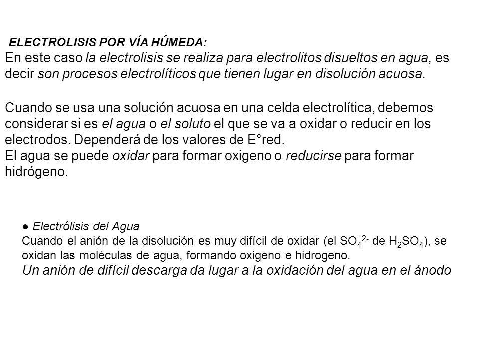 ELECTROLISIS POR VÍA HÚMEDA: