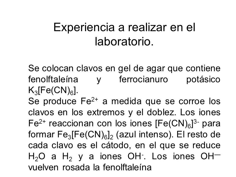Experiencia a realizar en el laboratorio.
