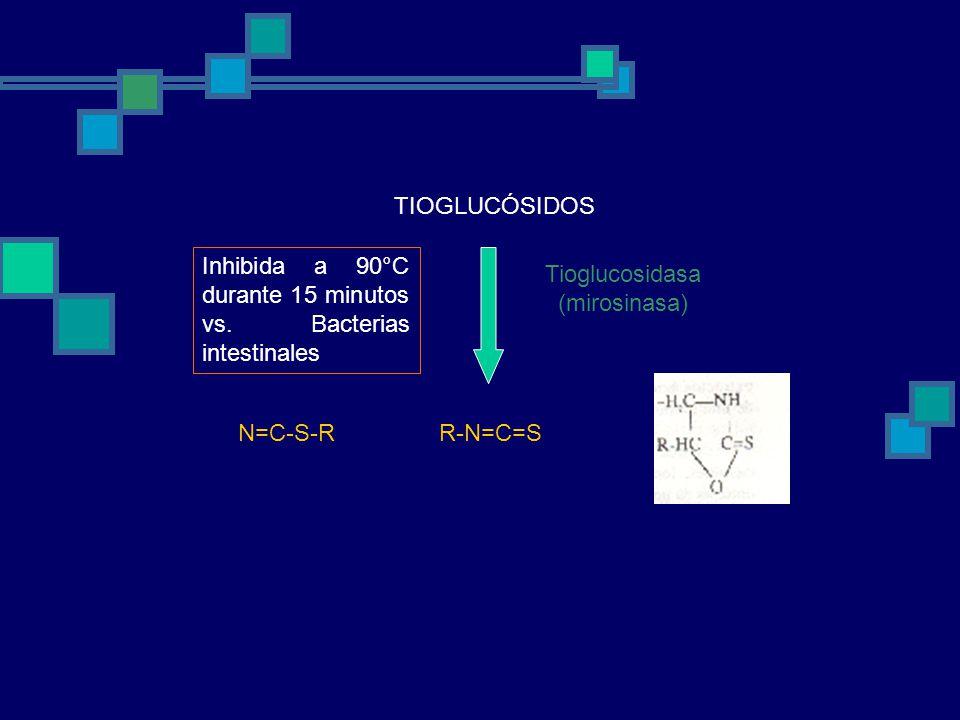 Tioglucosidasa (mirosinasa)