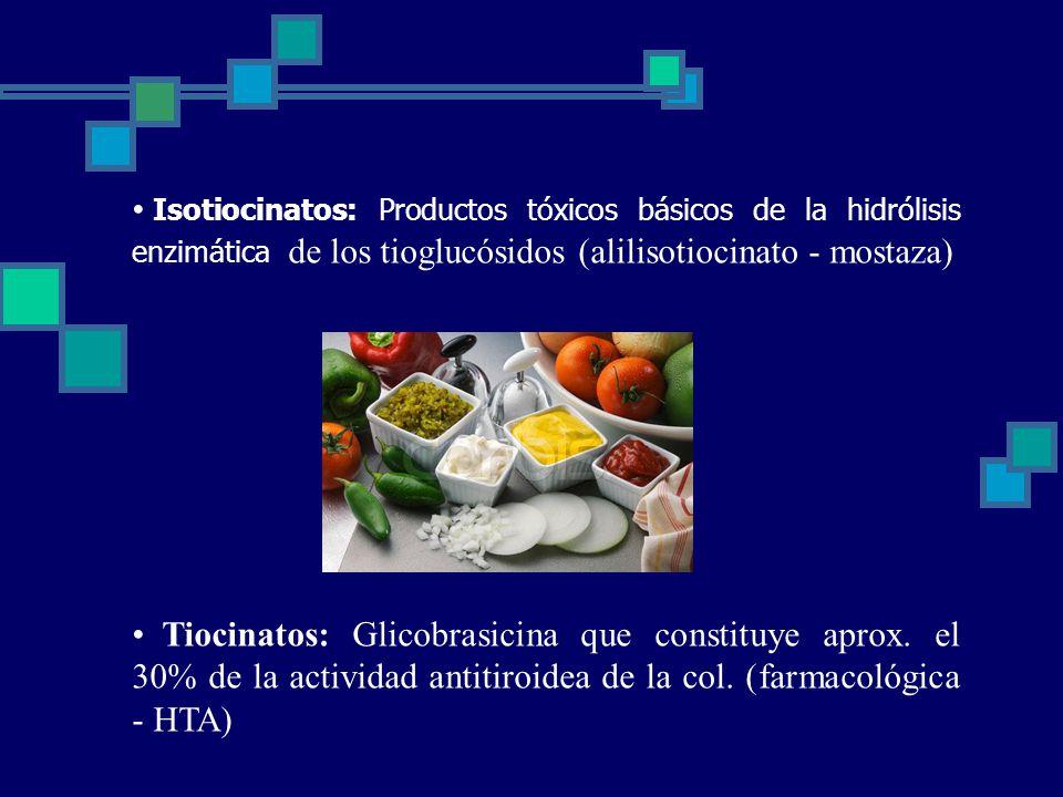 Isotiocinatos: Productos tóxicos básicos de la hidrólisis enzimática de los tioglucósidos (alilisotiocinato - mostaza)