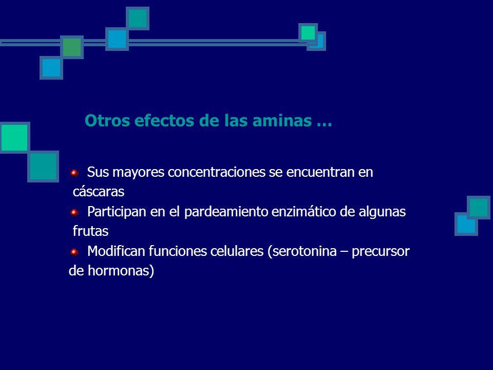Otros efectos de las aminas …