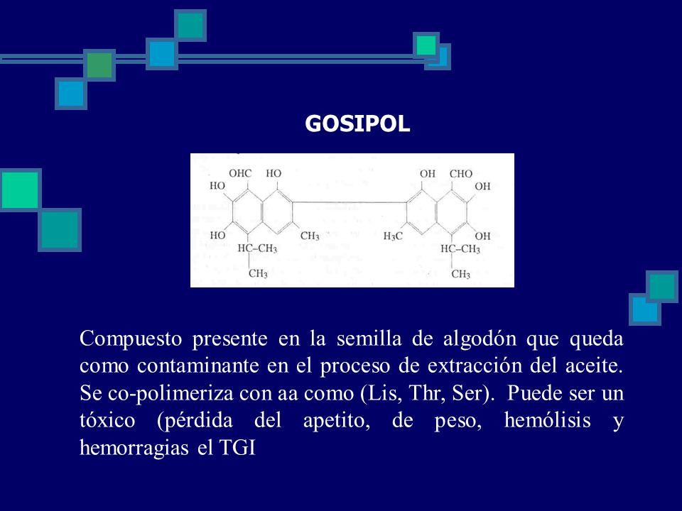 GOSIPOL