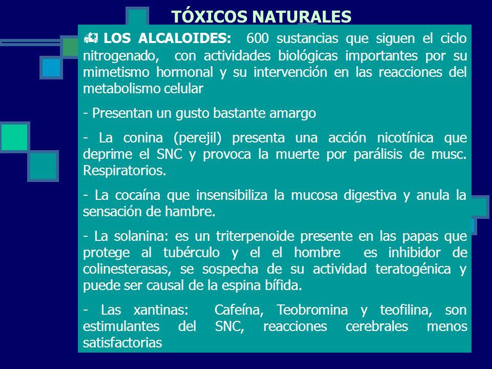TÓXICOS NATURALES
