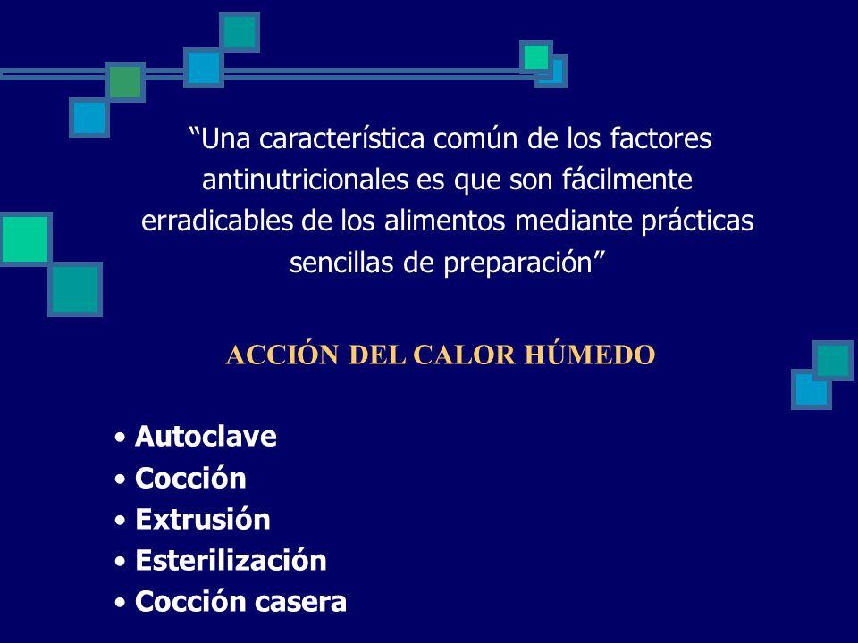 ACCIÓN DEL CALOR HÚMEDO