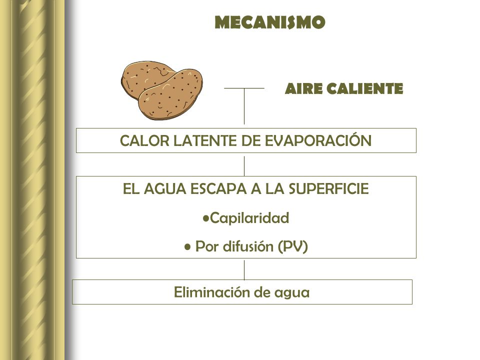 MECANISMO AIRE CALIENTE CALOR LATENTE DE EVAPORACIÓN