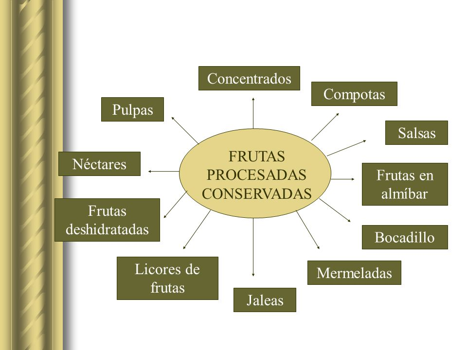 FRUTAS PROCESADAS CONSERVADAS