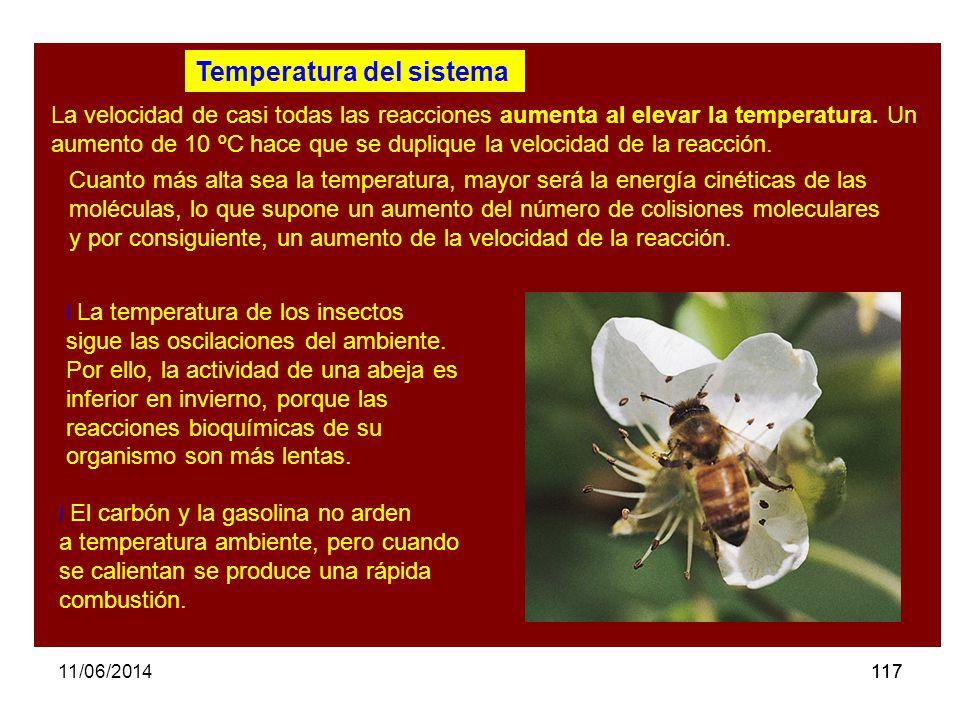 Temperatura del sistema