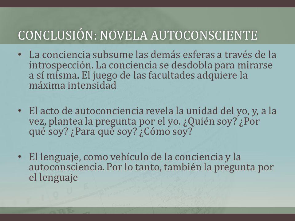Conclusión: Novela autoconsciente
