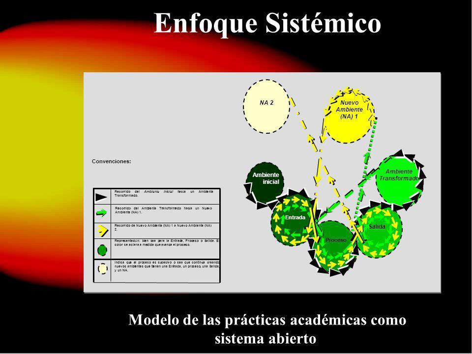 Modelo de las prácticas académicas como sistema abierto.