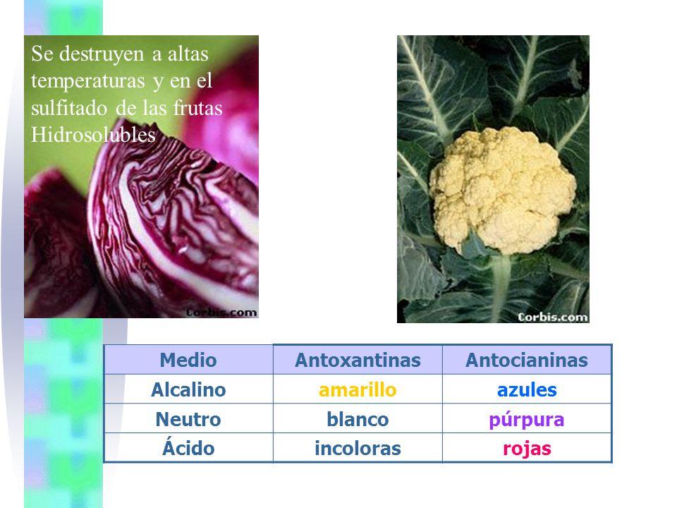 sulfitado de las frutas Hidrosolubles