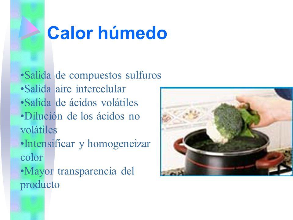 Calor húmedo Salida de compuestos sulfuros Salida aire intercelular