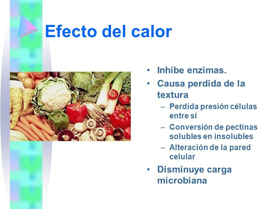 Efecto del calor Inhibe enzimas. Causa perdida de la textura