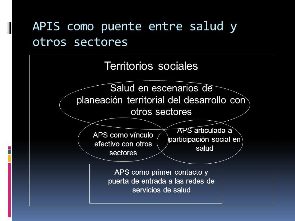 APIS como puente entre salud y otros sectores