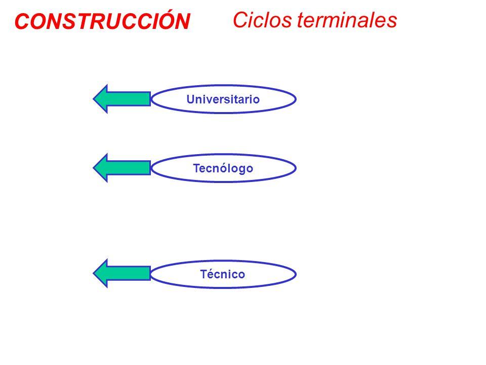 CONSTRUCCIÓN Ciclos terminales Universitario Tecnólogo Técnico