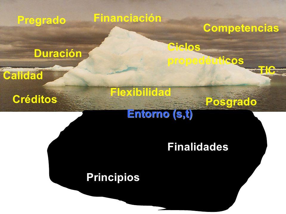 Financiación Pregrado. Competencias. Ciclos propedéuticos. Duración. TIC. Calidad. Flexibilidad.