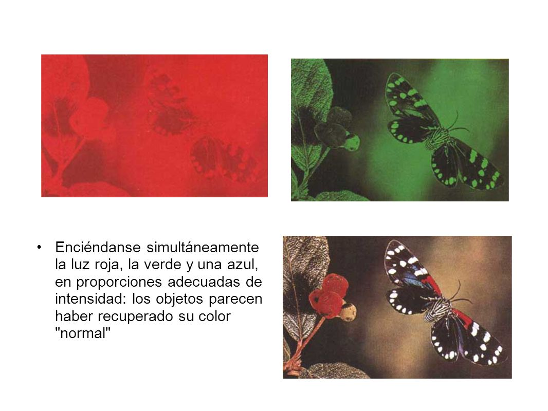 Enciéndanse simultáneamente la luz roja, la verde y una azul, en proporciones adecuadas de intensidad: los objetos parecen haber recuperado su color normal