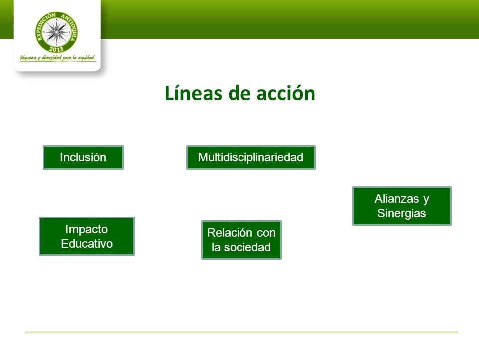 Líneas de acción Inclusión Multidisciplinariedad Alianzas y Sinergias