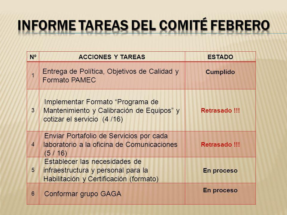 Informe tareas DEL comité febrero