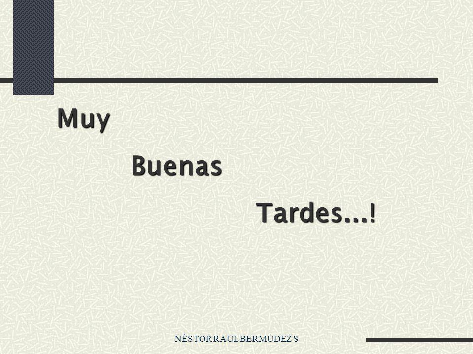 Muy Buenas Tardes...! NÈSTOR RAUL BERMÙDEZ S