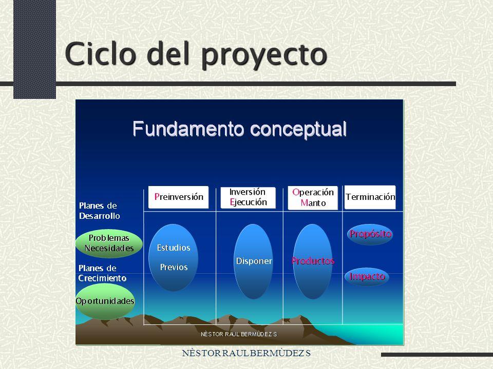 Ciclo del proyecto NÈSTOR RAUL BERMÙDEZ S