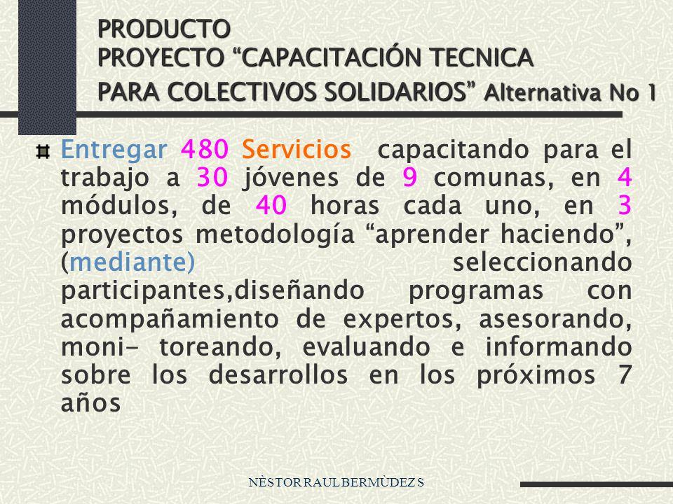 PRODUCTO PROYECTO CAPACITACIÓN TECNICA PARA COLECTIVOS SOLIDARIOS Alternativa No 1