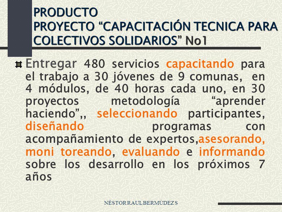 PRODUCTO PROYECTO CAPACITACIÓN TECNICA PARA COLECTIVOS SOLIDARIOS No1