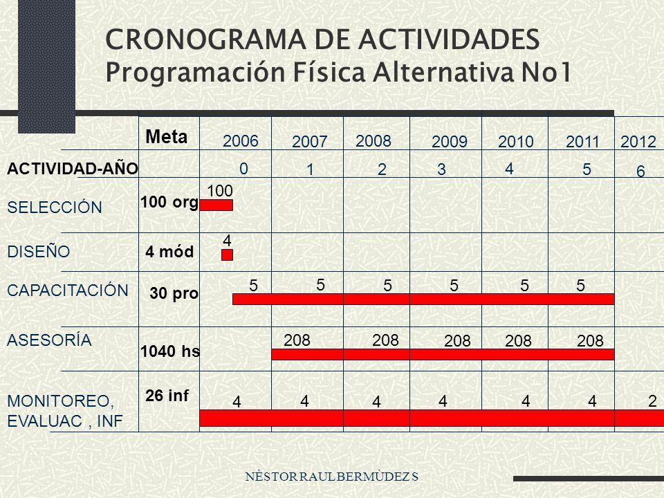 CRONOGRAMA DE ACTIVIDADES Programación Física Alternativa No1