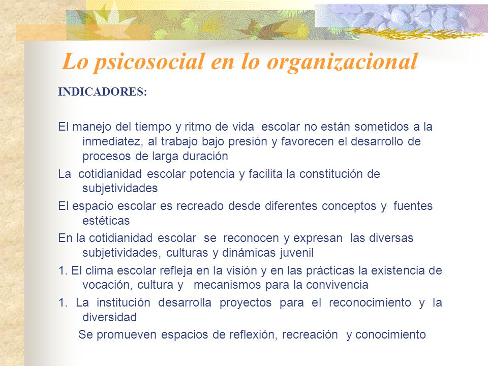 Lo psicosocial en lo organizacional