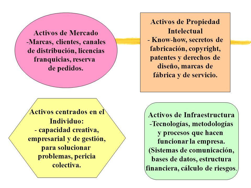 Activos centrados en el Individuo: Activos de Infraestructura