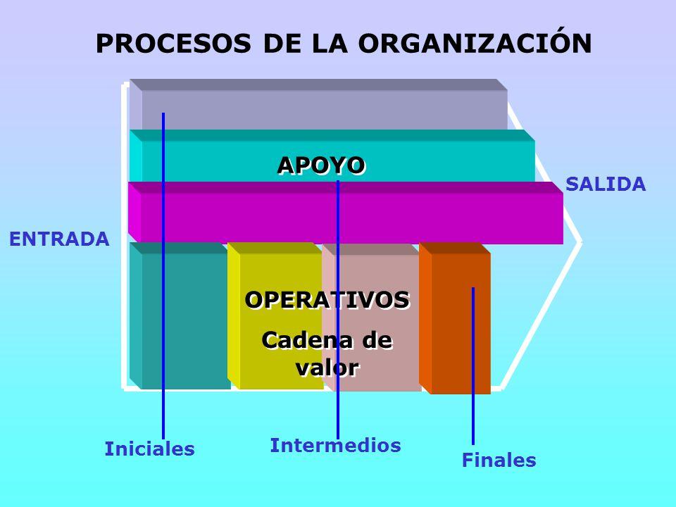 PROCESOS DE LA ORGANIZACIÓN