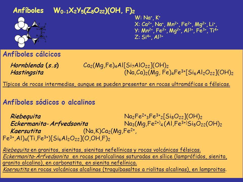 Anfíboles W0-1X2Y5(Z8O22)(OH, F)2