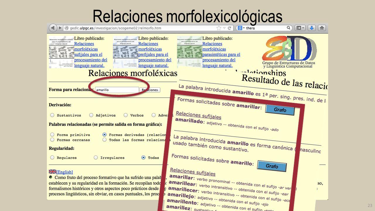 Relaciones morfolexicológicas