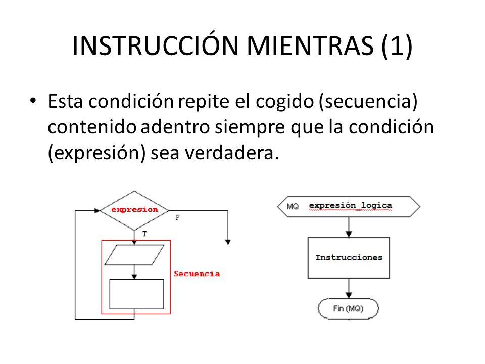 INSTRUCCIÓN MIENTRAS (1)