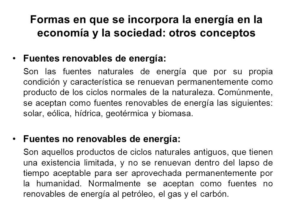 Formas en que se incorpora la energía en la economía y la sociedad: otros conceptos