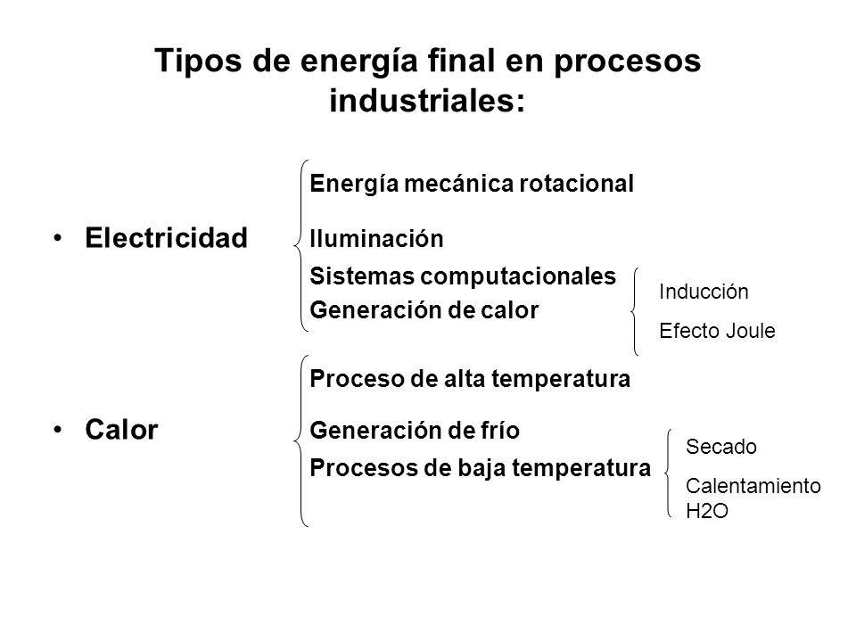 Tipos de energía final en procesos industriales: