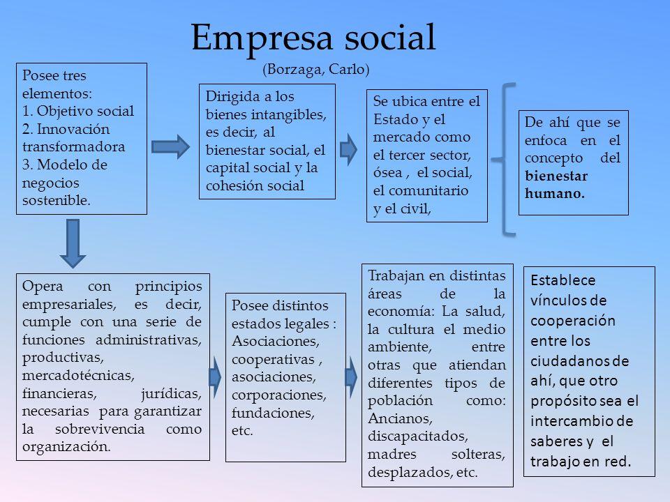 Empresa social (Borzaga, Carlo) Posee tres elementos: 1. Objetivo social. 2. Innovación transformadora.