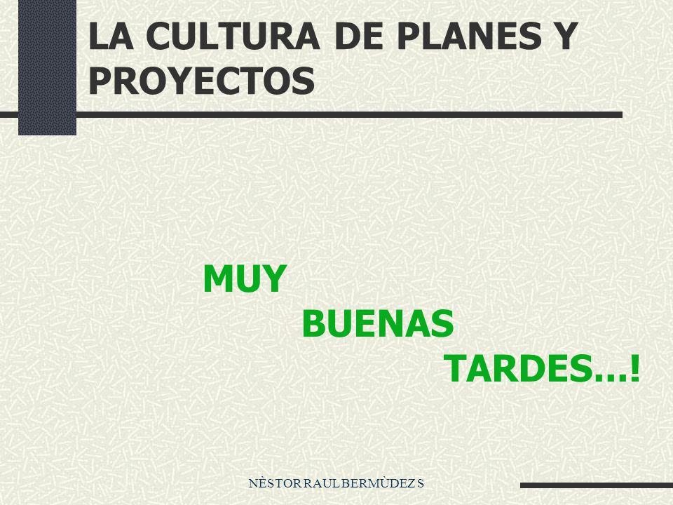 LA CULTURA DE PLANES Y PROYECTOS